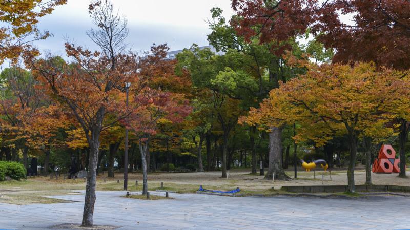 中央公園の秋 2019_d0246136_23181530.jpg