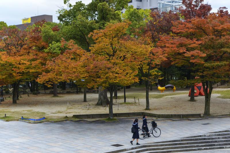 中央公園の秋 2019_d0246136_23184741.jpg