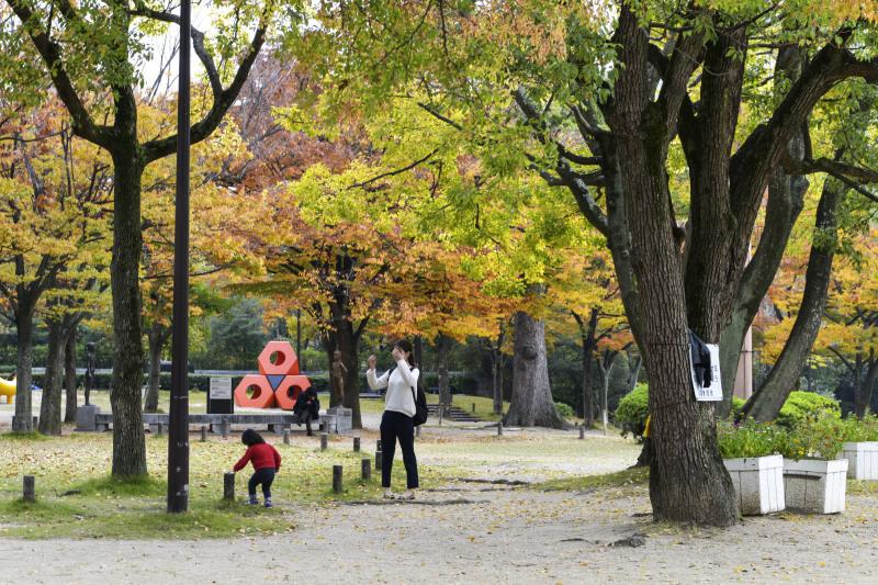 中央公園の秋 2019_d0246136_23190523.jpg