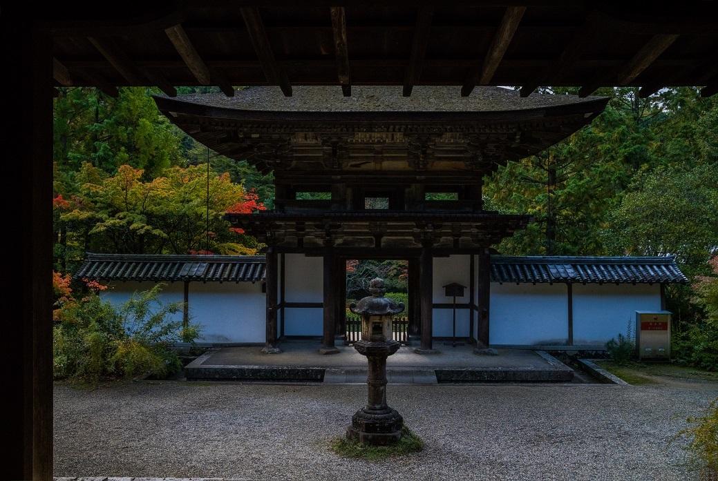 2019奈良紅葉~円成寺_e0363038_21335316.jpg