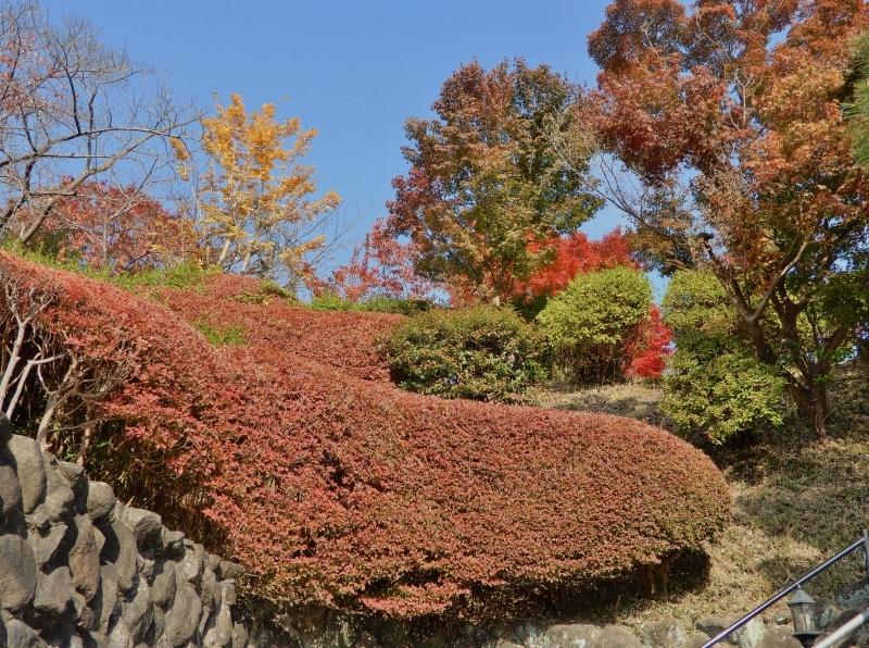 秋の館のアートフェスタ(上)* Gakuenmae Art Festa1_f0374041_13000958.jpg