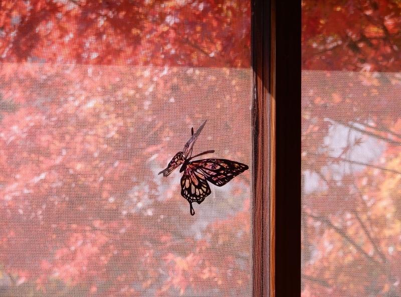 秋の館のアートフェスタ(上)* Gakuenmae Art Festa1_f0374041_13105969.jpg