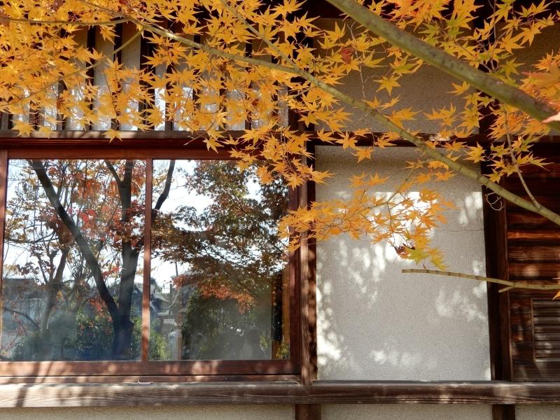 秋の館のアートフェスタ(中)* Gakuenmae Art Festa2_f0374041_13231922.jpg