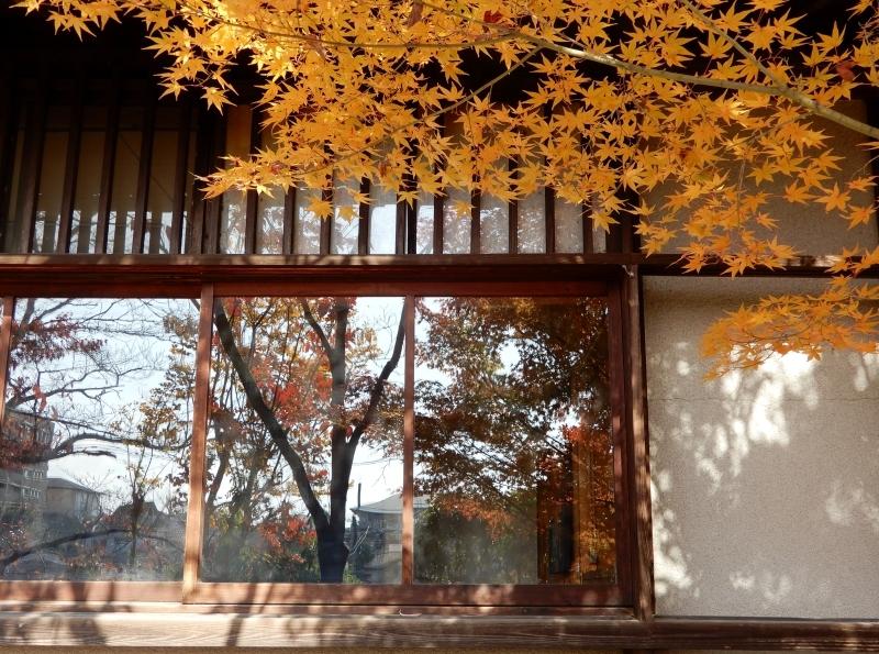 秋の館のアートフェスタ(下)* Gakuenmae Art Festa3_f0374041_16004423.jpg
