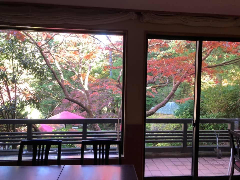 箱根強羅碧梧旅館_f0070743_17483747.jpg