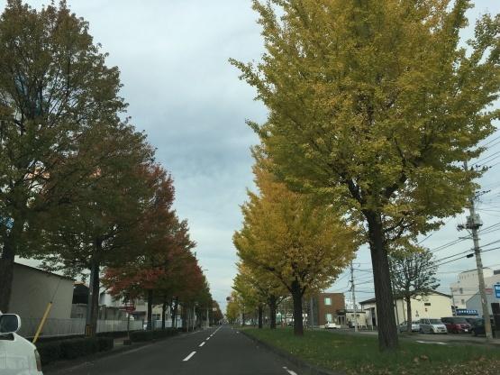 11月7日(木)紅葉〜マック〜アンサンブル作曲_b0206845_11474741.jpeg