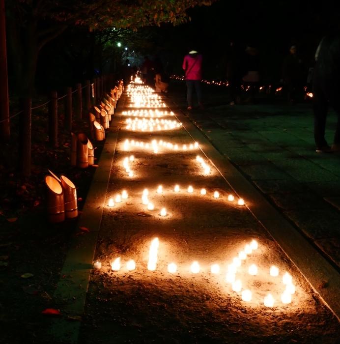 竹燈夜 お城 幻想的に  2019-11-20 00:00  _b0093754_21054978.jpg