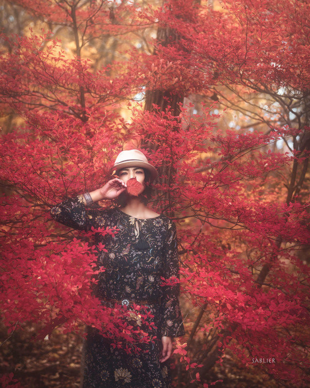 Autumn is in the air_f0300369_18042021.jpg