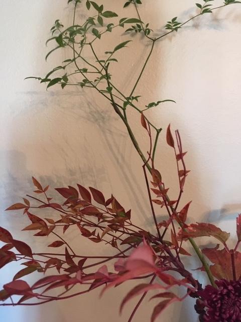 自画自賛の生け花に秋を感じる_e0350971_12011140.jpg