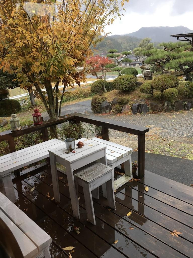 暖かな11月 〜久々の雨の月曜日〜_c0334574_19111484.jpg