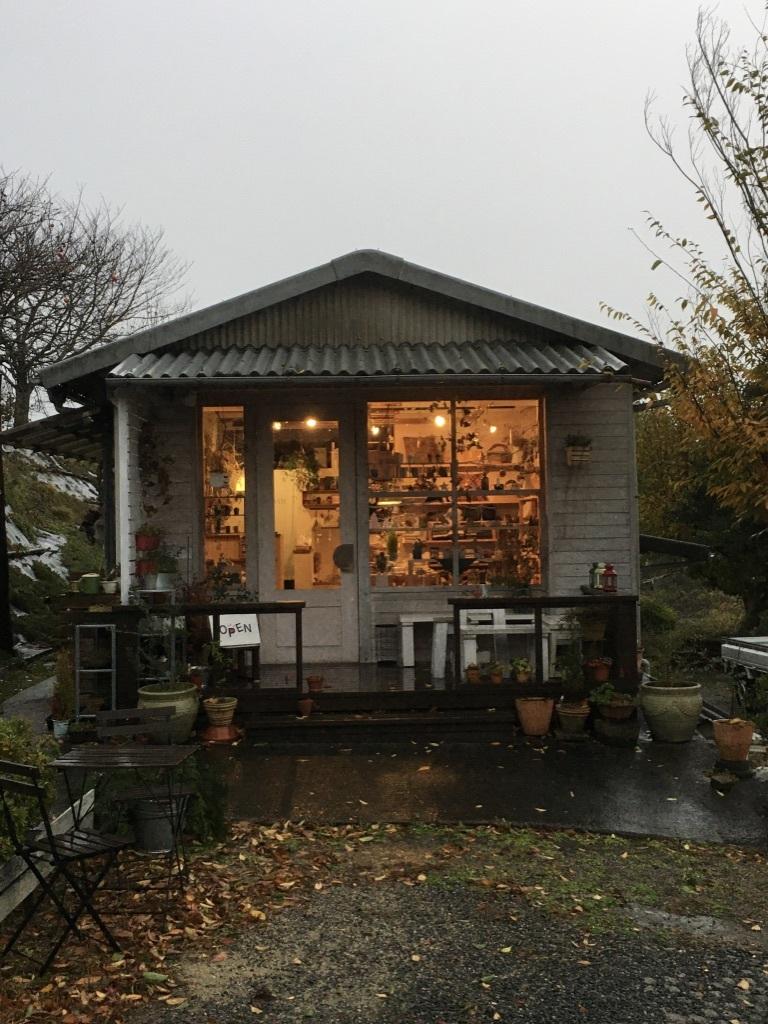 暖かな11月 〜久々の雨の月曜日〜_c0334574_19134818.jpg
