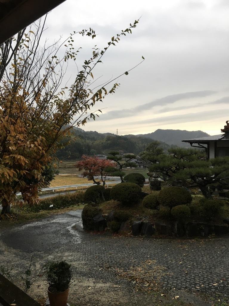 暖かな11月 〜久々の雨の月曜日〜_c0334574_19155944.jpg