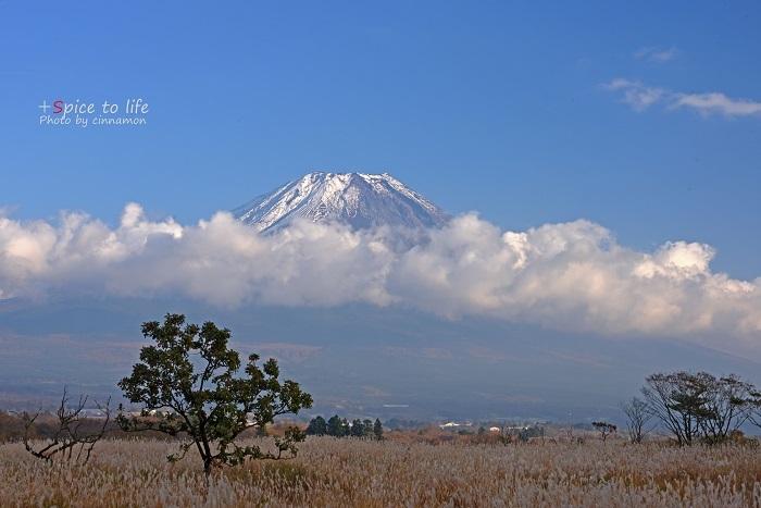 富士山とススキ_f0326278_21502312.jpg