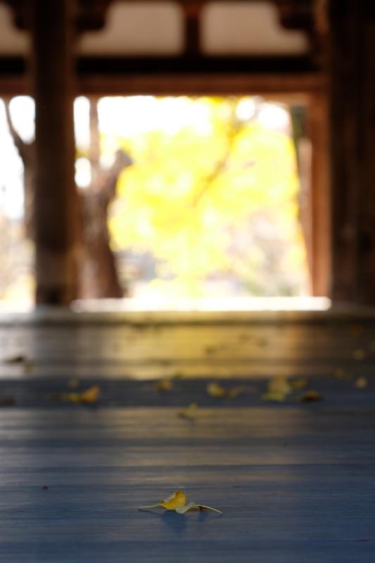 新宮熊野神社 長床にて 喜多方市 2019・11・17_e0143883_19084761.jpg
