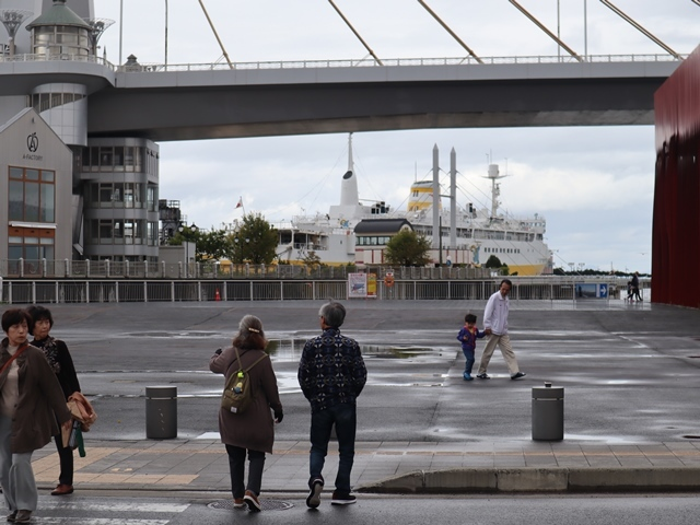 藤田八束の鉄道写真@青い森鉄道、JR青森駅でカシオペアに出逢い写真をゲット、リゾート列車が青森駅を素敵に演出するとき_d0181492_23541504.jpg