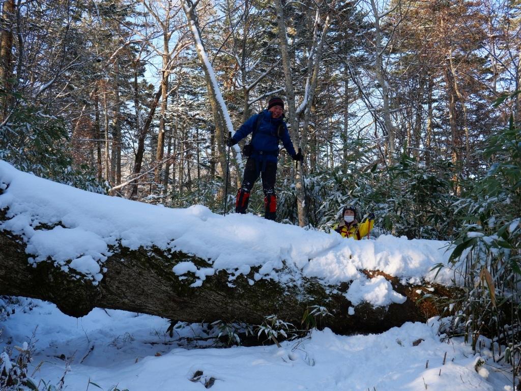 まるで厳冬期の風不死岳(1102m)、2019.11.17_f0138096_12152134.jpg