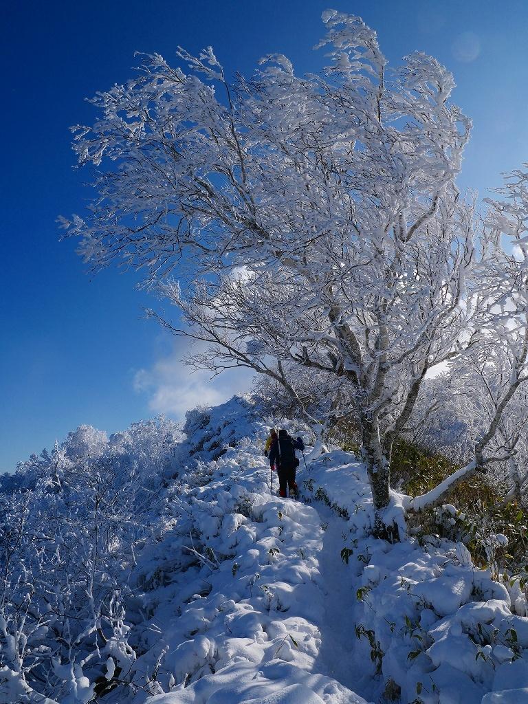 まるで厳冬期の風不死岳(1102m)、2019.11.17_f0138096_12152350.jpg