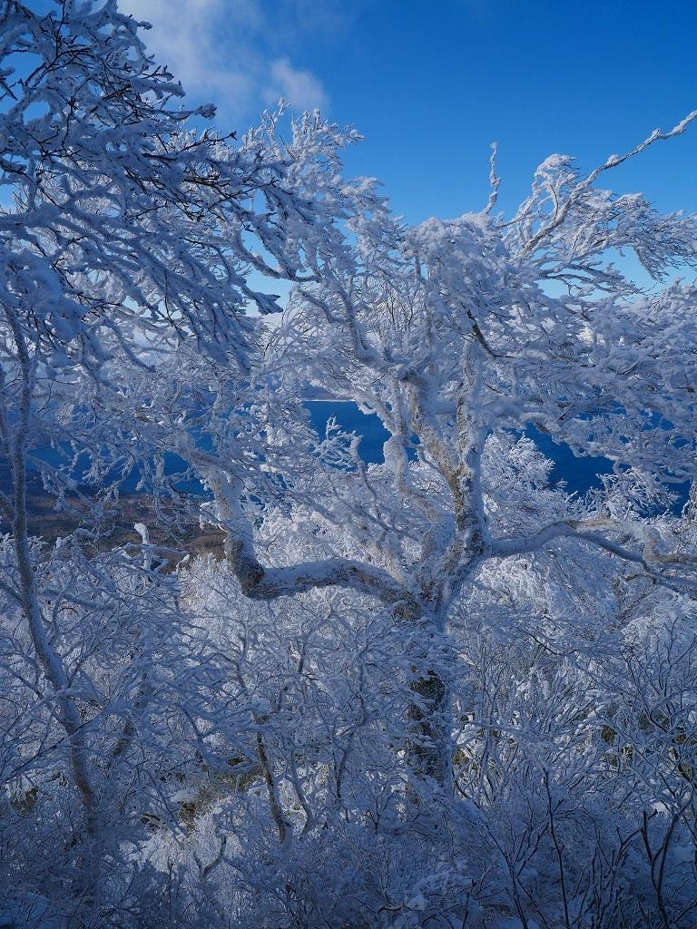 まるで厳冬期の風不死岳(1102m)、2019.11.17_f0138096_12152370.jpg