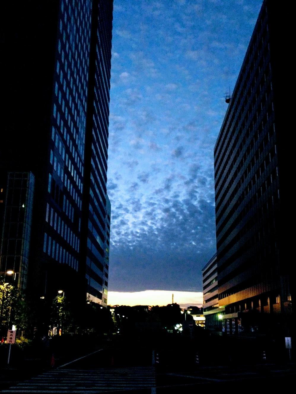 日本橋散歩_f0017300_00410693.jpg