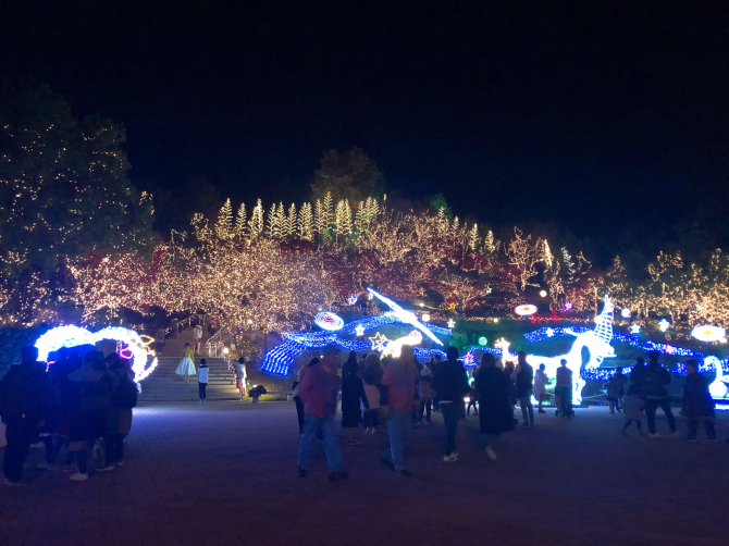 イルミネーションキラキラの国営備北丘陵公園へ_e0319202_11420248.jpg