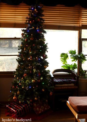 窓辺でお昼寝中 / クリスマスツリーはじめました_b0253205_07382445.jpg