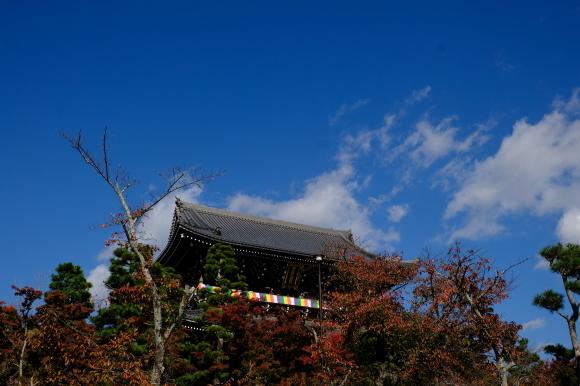 京都の旅 \'19 秋_e0000910_14572513.jpg