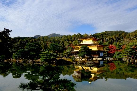 京都の旅 \'19 秋_e0000910_15103441.jpg