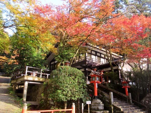 紅葉が盛り 鞍馬_e0048413_19525172.jpg