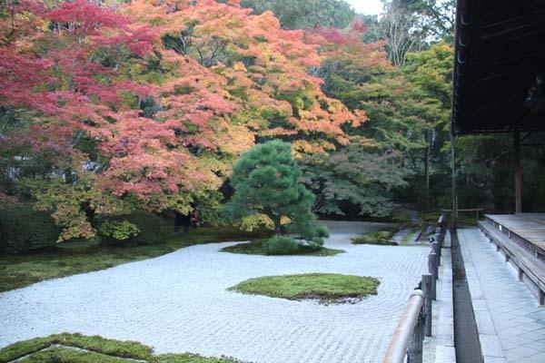 紅葉が盛り 南禅寺 天授庵_e0048413_21132255.jpg