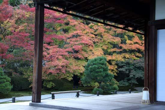 紅葉が盛り 南禅寺 天授庵_e0048413_21132294.jpg