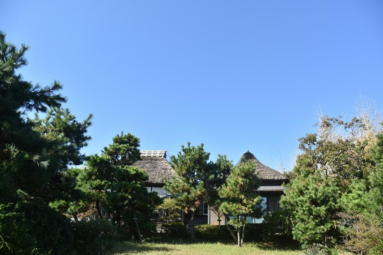 万代会館 松林に囲まれて・・・_d0065116_21345742.jpg