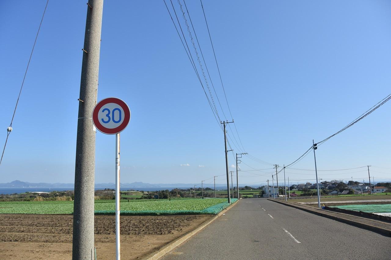 松輪の畑 東京湾をみおろして・・・_d0065116_21595491.jpg