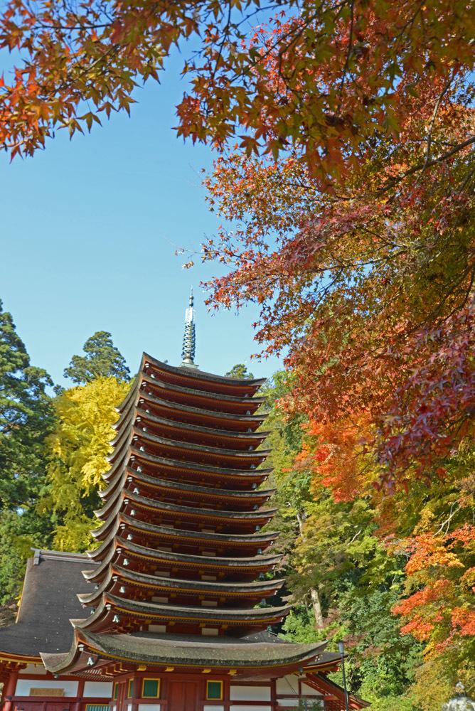 京都、そして奈良_e0367330_20525951.jpg
