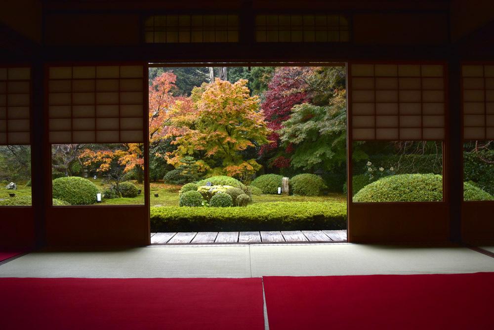 京都、そして奈良_e0367330_21101479.jpg