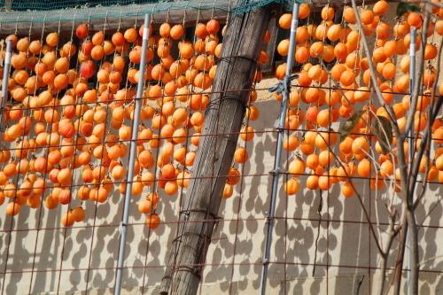 干し柿の里_a0345833_20023563.jpg