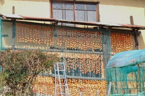 干し柿の里_a0345833_20060040.jpg
