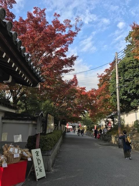 東福寺の紅葉見頃です!_d0020139_12135441.jpeg