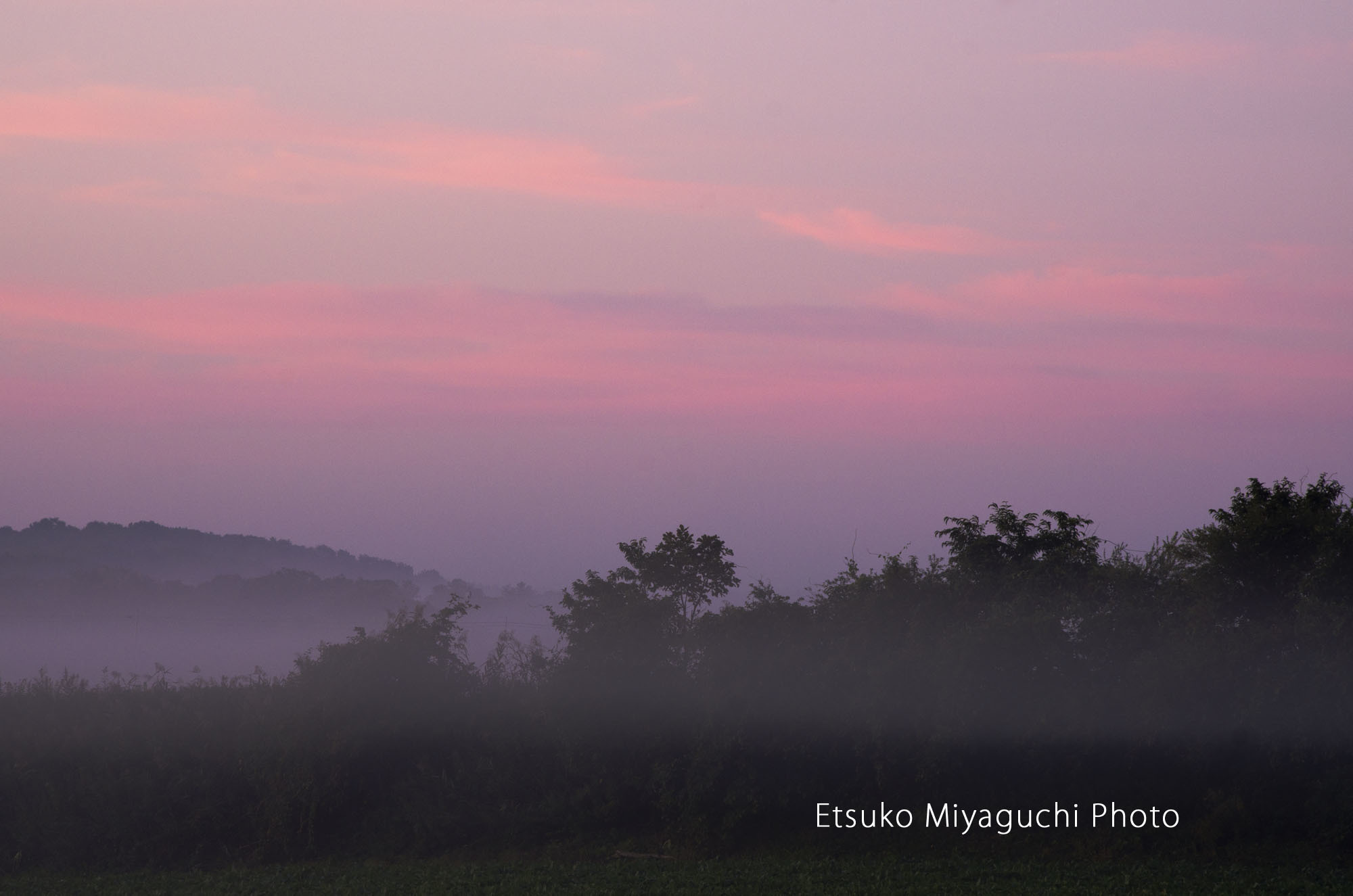 淡い朝焼けのひととき_f0152939_04011283.jpg