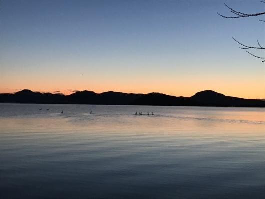 初冬の屈斜路湖_b0072541_20581641.jpeg