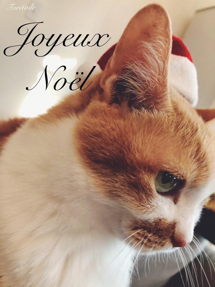 Joyeux Noël_f0377243_09550238.jpg
