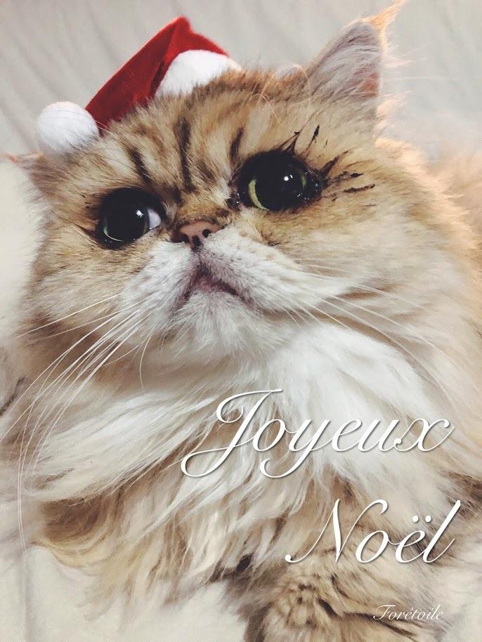 Joyeux Noël_f0377243_09580837.jpg