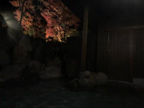 九州旅行2019 〜お部屋滞在編〜_e0310553_20085272.jpg
