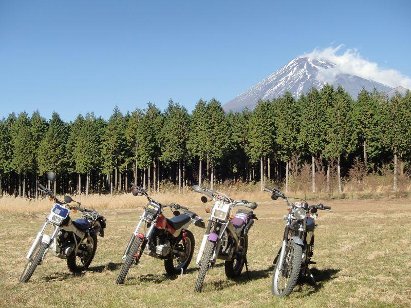 またまた富士山南麓の林道へ_f0119755_16123521.jpg