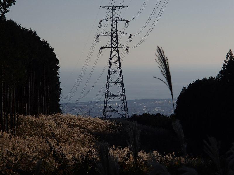 またまた富士山南麓の林道へ_f0119755_16280659.jpg
