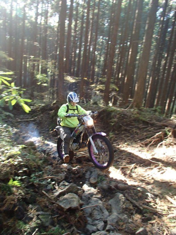 またまた富士山南麓の林道へ_f0119755_16280663.jpg