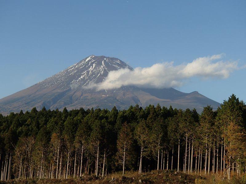 またまた富士山南麓の林道へ_f0119755_16414537.jpg