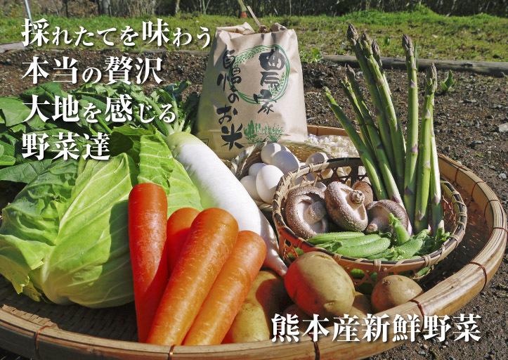 長尾ブランドの新鮮野菜!大人気の朝採りダイコンに続き、朝採りニンジン、朝採りほうれん草販売スタート!_a0254656_17201622.jpg