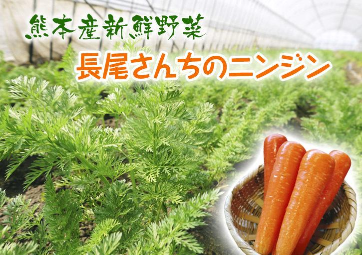 長尾ブランドの新鮮野菜!大人気の朝採りダイコンに続き、朝採りニンジン、朝採りほうれん草販売スタート!_a0254656_17235014.jpg