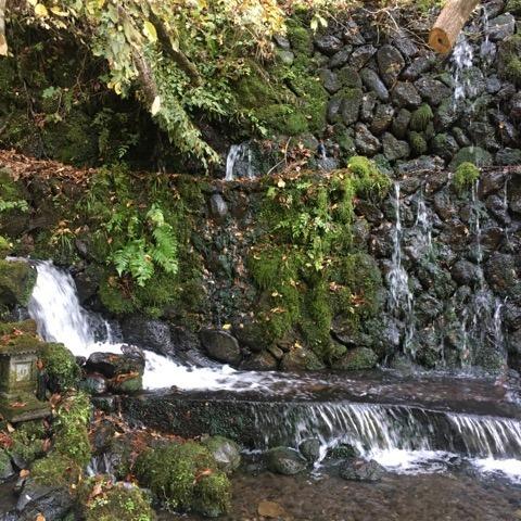 富士山静養園へ -地域・コミュニティ・循環、そして源流へ ー_a0020162_13112087.jpg