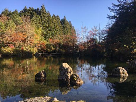 富士山静養園へ -地域・コミュニティ・循環、そして源流へ ー_a0020162_13124122.jpg